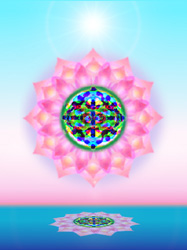 Shining Spirits - Vibrational Essence Therapy & Space Clearing in Ojai and Santa Barbara