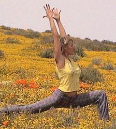 Santa Barbara Colon Therapy Cleansing Retreats Massage