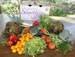 Organic vegetable and fruit delivery in Goleta & Santa Barbara