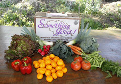 Organic vegetable and fruit delivery in Santa Barbara California
