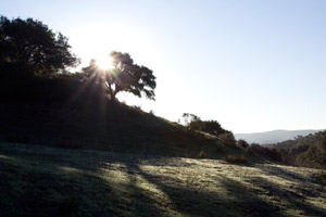 Santa Barbara Sacred Astrology Retreats - Sunburst Sanctuary - Spiritual and Healing Workshops